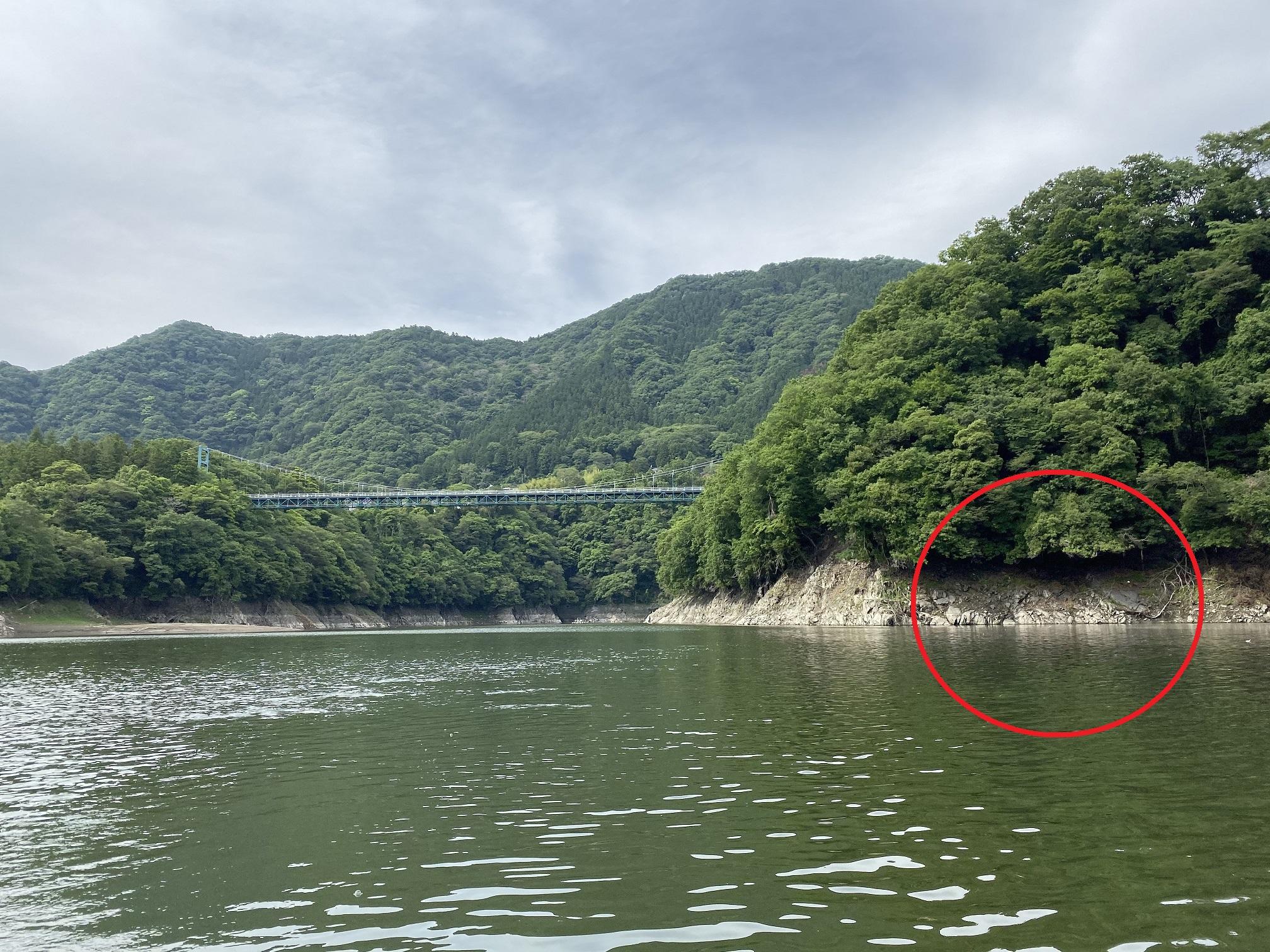 津久井湖 バス釣り 名手ワンドポイント