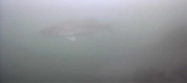 津久井湖 バス釣りポイント 又野送気所前 水中写真 ブラックバス