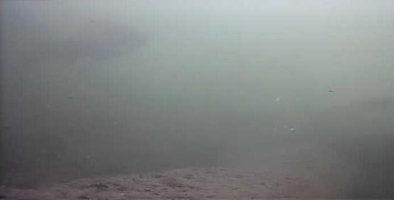 津久井湖 バス釣り 日赤下 水中写真 ブルーギル