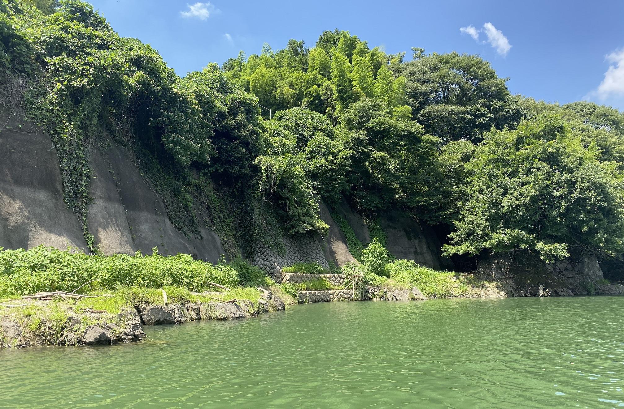 津久井湖 バス釣りポイント 三井大橋横ヒナダン