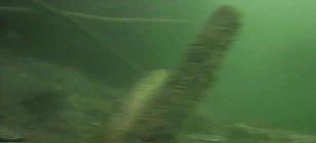 津久井湖 バス釣りポイント 三井大橋横ヒナダン 水中映像
