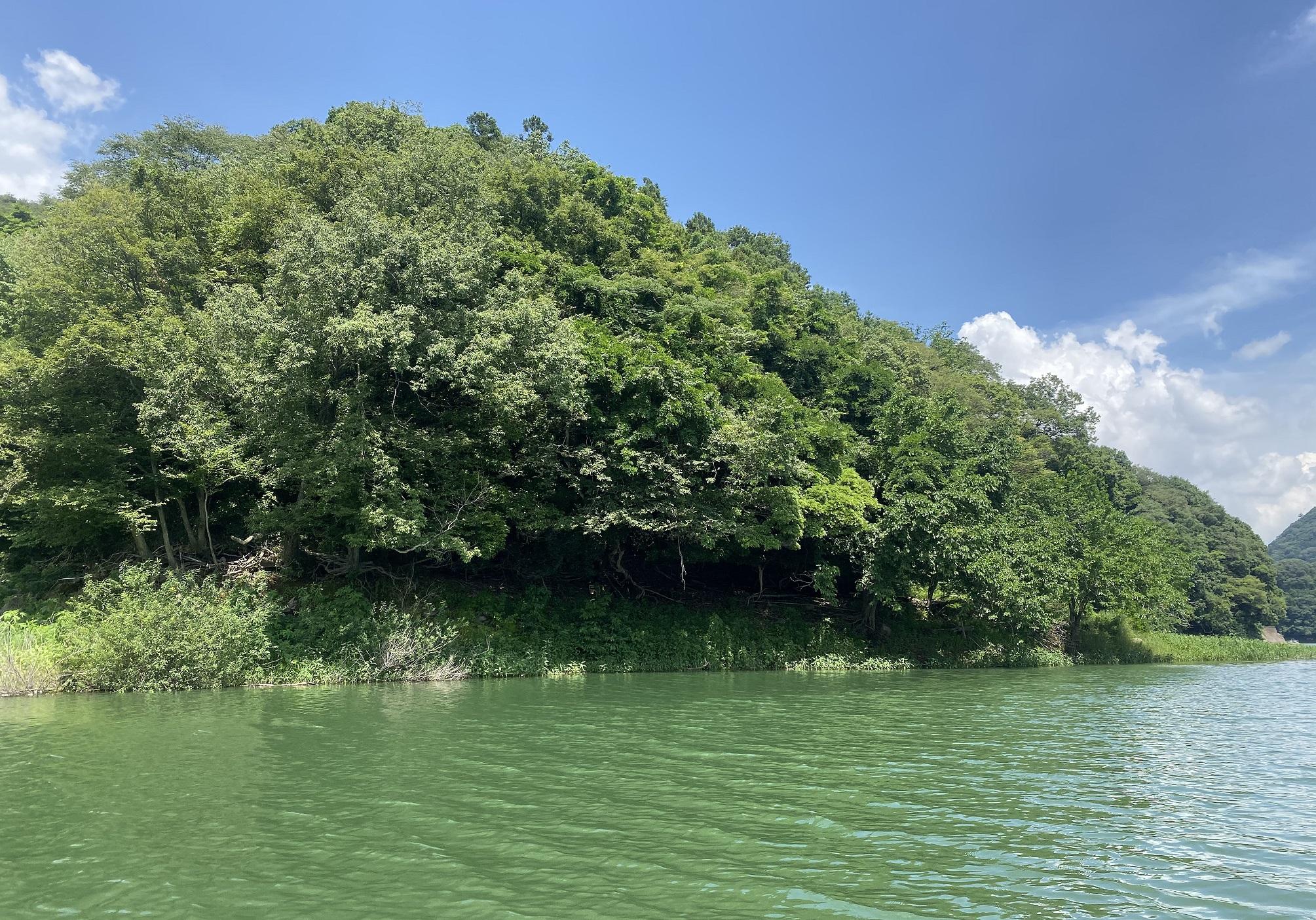 津久井湖 バス釣りポイント 神社跡