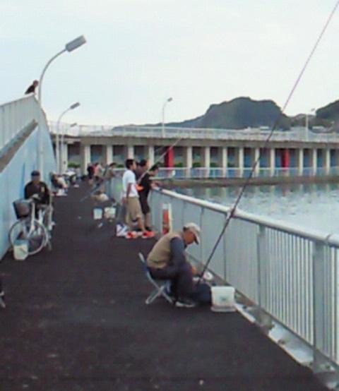 千葉県の釣りスポットガイド 前原フィッシャリーナ