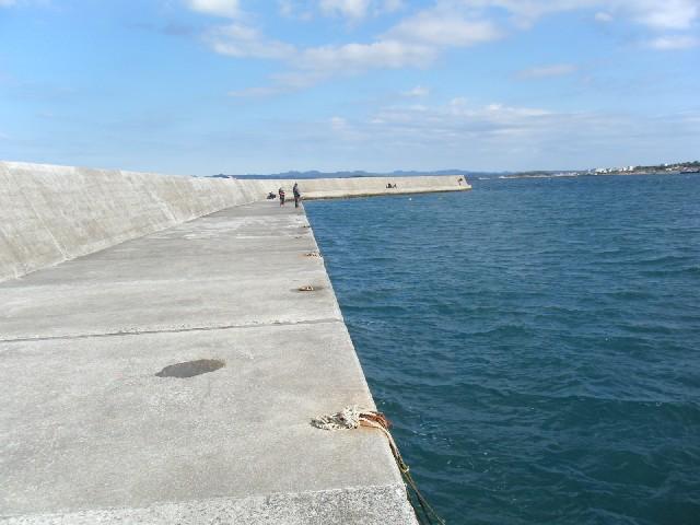千葉県の釣りスポットガイド 浜田港