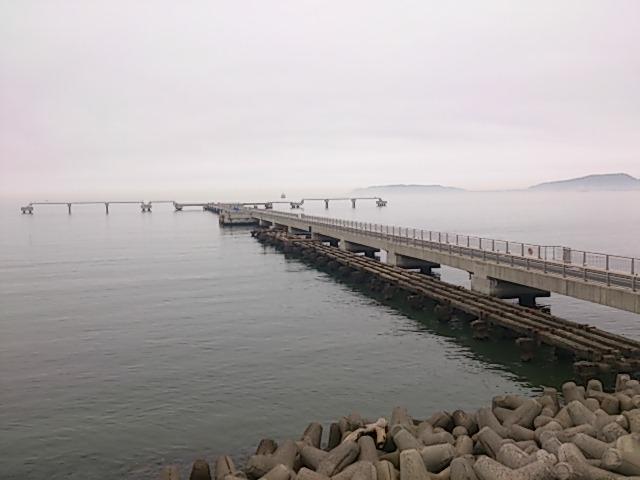 千葉県の釣りスポットガイド 館山 夕日桟橋