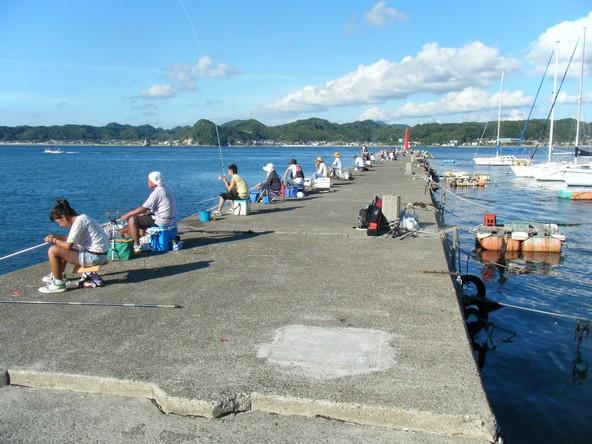 千葉県の釣りスポットガイド 富浦新港